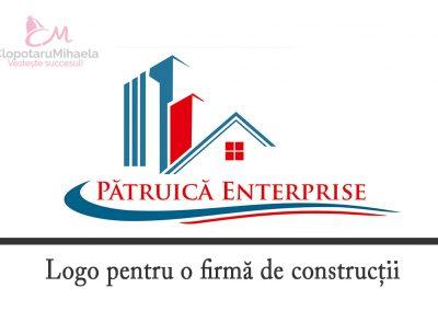 logo constructii patruica